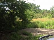 Продается земельный участок в Кобулети, Аджария, Грузия Фото 9