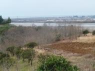 Земельный участок в Батуми с видом на море. Фото 5