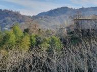 Дом с участком и видом на море на Зеленом Мысе, Батуми, Грузия. Фото 6