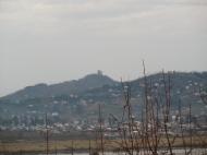 Участок в Ахалсопели, Аджария. Участок с видом на море и город в Ахалсопели, Аджария, Грузия. Фото 6