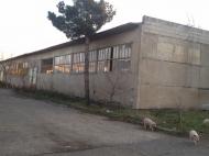 Коммерческая недвижимость в Грузии. Купить действующее фармацевтическое производство в Рустави. Фото 3