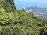 Земельный участок у моря. Зеленый Мыс, Грузия. Фото 4