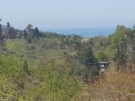 Аренда дома с видом на море и горы в тихом районе. Махинджаури, Аджария, Грузия. Фото 1