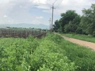 Купить земельный участок в пригороде Тбилиси. Фото 1