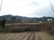 Земельный участок в Батуми с природным родником Фото 7