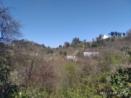 Дом с участком и видом на море на Зеленом Мысе, Батуми, Грузия. Фото 2