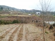 Земельный участок в Батуми с природным родником Фото 6