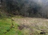 Продается земельный участок в живописном месте. Фото 7