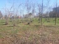 Продается земельный участок в Мухаэстате, Грузия. Фото 4