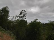 Земельный участок с видом на море в Цихисдзири. Купить земельный участок в Грузии. Фото 2
