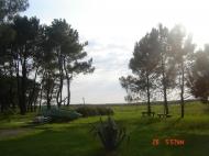 Active elite rest house for sale on the Black Sea coast in Ureki. Tourist and health resort by the sea in Ureki, Georgia. Photo 2