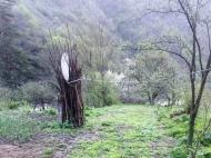 Земельный участок в курортном районе Грузии. Фото 3