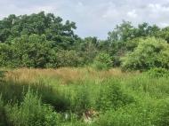 Продается земельный участок в Кобулети, Аджария, Грузия Фото 1