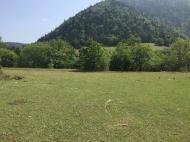 Земельный участок в курортной зоне Боржоми, Грузия. Продается земельный участок в живописном месте.  Фото 1