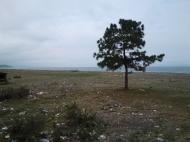 Земельный участок выгодный для инвестиций в Кобулети, Аджария, Грузия. Фото 3