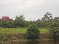 Дом с участком на Аэропортовском шоссе в Батуми, Грузия. Фото 7