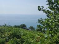 Земельный участок с видом на море и город. Сарпи, Грузия. Фото 2
