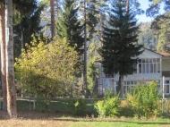 Земельный участок с коттеджами  в сосновом лесу в курортном районе в Борджоми, Грузия. Фото 6