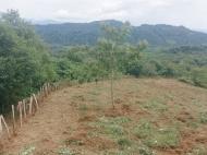 Участок для инвестиций. Земельный участок на продажу в Озургети, Грузия. Фото 7
