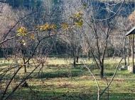 Продается земельный участок в живописном месте. Продается земельный участок в Мцхета, Грузия. Фото 3