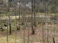Продается земельный участок в живописном месте. Фото 10