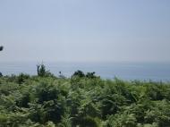 Земельный участок с видом на море и город. Сарпи, Грузия. Фото 3