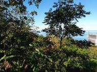 Участок в Махинджаури с видом на море и на город Батуми, Грузия. Фото 4