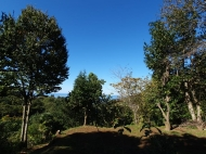 Земельный участок в Махинджаури с видом на море и на горы. Фото 2