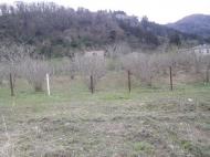 Земельный участок в Гонио, Грузия. Фото 4