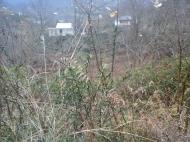 Купить земельный участок в Чакви, Аджария, Грузия. Фото 2