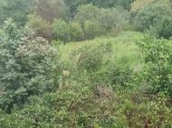 в окрестностях Кобулети продается двухэтажный частный дом с земельным участком. Фото 16