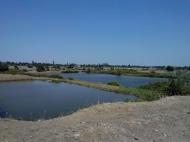 Земельный участок с озером в Марнеули, Грузия. Готовый бизнес. Фото 6