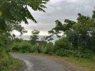 იყიდება კერძო სახლი ზღვისა და მთების ხედით ციხისძირში. ქობულეთი. საქართ[ელო. ფოტო 12