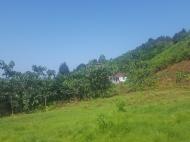 Земельный участок в Капрешуми, Батуми, Грузия. Фото 4