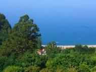Купить участок с видом на море в Квариати Фото 5