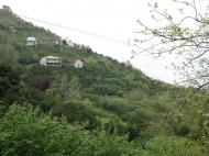 Дом с участком в Батуми,Грузия. Купить дом с земельным участком в Батуми,Грузия. Фото 19