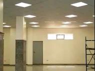 Аренда офиса в центре Батуми. Грузия. Фото 3