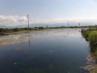 Продается земельный участок у моря в Кобулети, Грузия. Выгодно для инвестиционных проектов. Фото 3