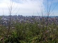 Участок с видом на море и на город Батуми,Грузия. Фото 3