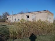 Земельный участок Гвимбалаури, Ланчхути, Гурия, Грузия. Фото 4