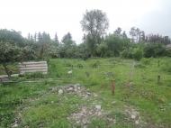 Дом с земельным участком и с теплицами для разведения роз в Барцхане, Батуми. Действуюший бизнес. Тепличное хозяйство в Батуми. Фото 10